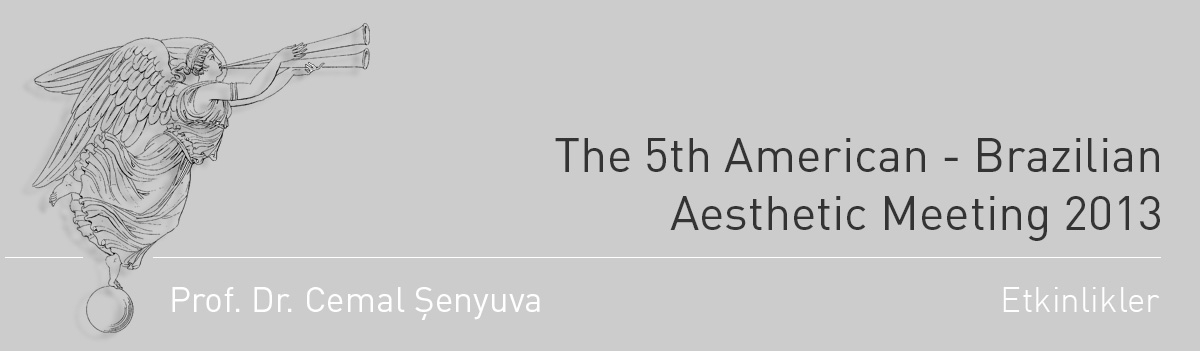 The 5th American - Brazilian Aesthetic Meeting 2013